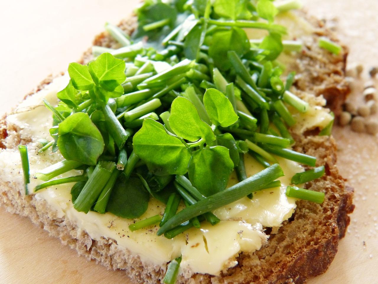 Błonnik pokarmowy w diecie